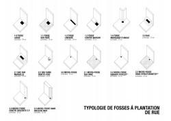 typologies des fosses